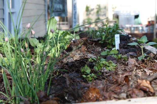 May 23:  Rooftop Garden